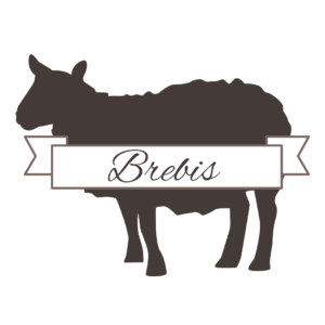 fromage brebis fromagerie metin